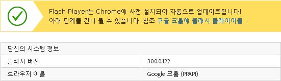 Google 크롬 (PPAPI).png