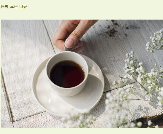 봄이 오는 이유.JPG