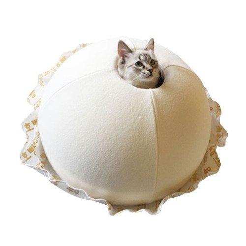 고양이 집 이상과 현실1.jpg